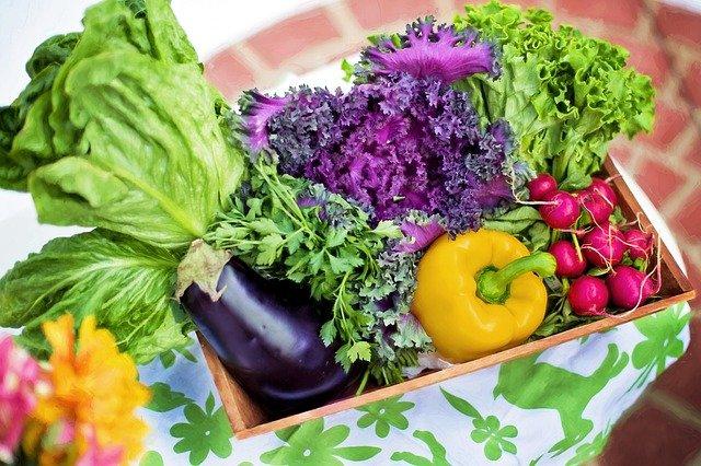 ビタミンたっぷり野菜